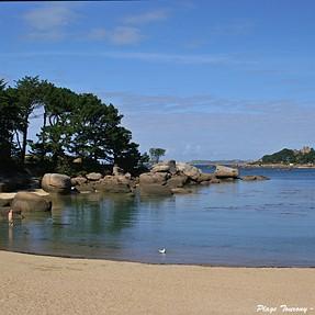 Along the coastal path (Trégastel area)