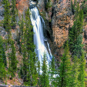 Yellowstone and Shoshone