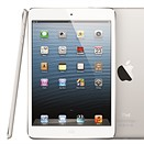 Apple boasts iPad sales while Android tablets gain traction