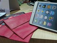Golla extends trendy line to iPad mini