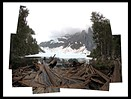 Technique: Digital Photo Collages