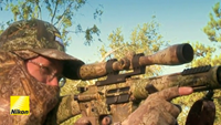 Nikon under fire over rifle scopes designed for 'dangerous game' hunting