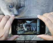 Stock photo agency Alamy to allow mobile photos