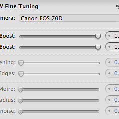 RAW fine tuning options greyed out in Aperture 3.5.1