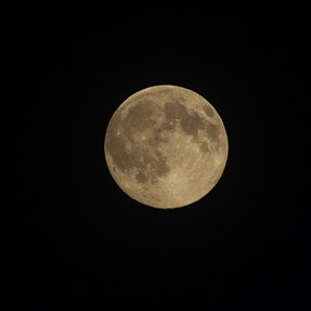 Pics of the Super Moon (the Grand Prize winner and First Runner Up)