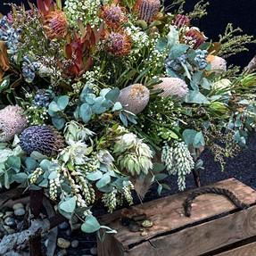 Lux D-6, Australian Wildflowers in a wheelbarrow......