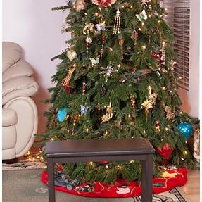 Portraits with Christmas Tree (E-3)