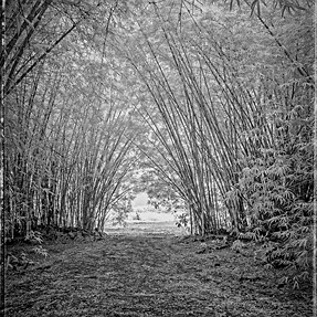 Sony a33 Infrared Different edits