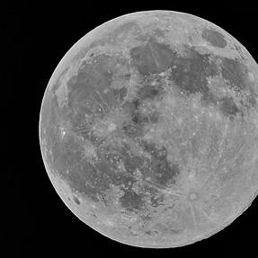 Sigma 150-600 C version shot on the Blue Moon ...