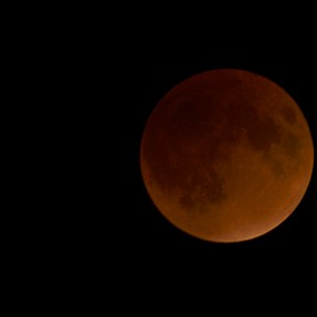 D7000 and Blood Moon