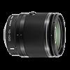 Nikon 1 Nikkor VR 10-100mm f/4.5-5.6