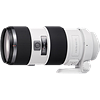 Sony 70-200mm F2.8 G Lens Review