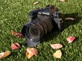 Complete control: Olympus OM-D E-M1 review posted