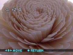 x2.0 playback zoom